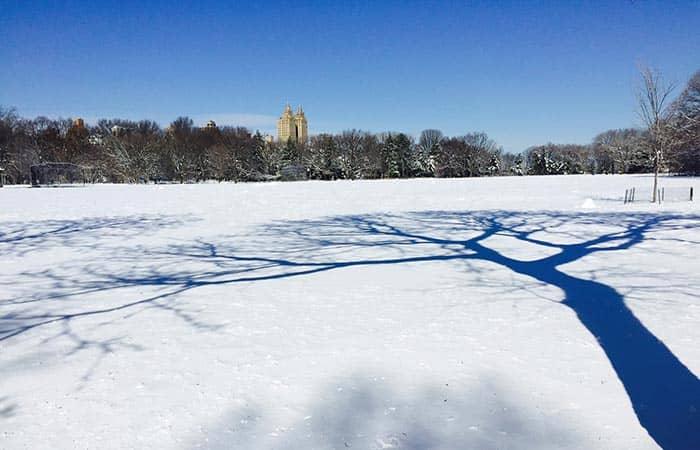 het-weer-in-new-york-winter