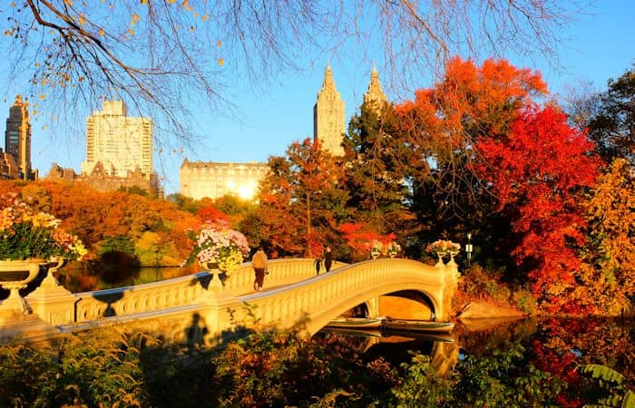 Weather in New York - Autumn