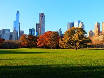 Central Park - Sheep Meadow Herfst