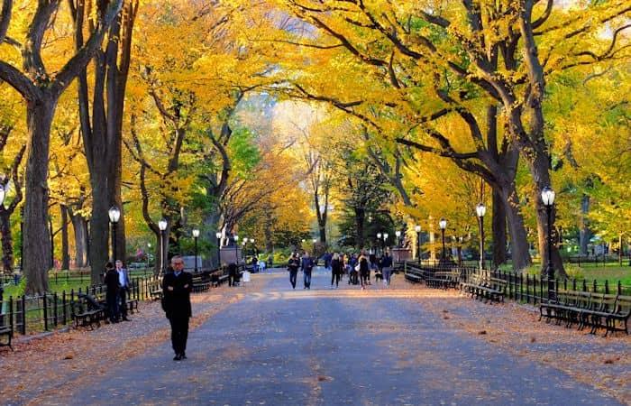 Central Park in New York - Herfst