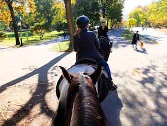 central-park-in-new-york-paardrijden