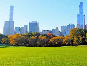 central-park-in-new-york-sheep-meadow-herfst