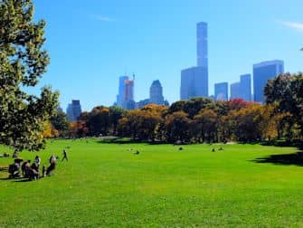 Central Park in New York - Sheep Meadow