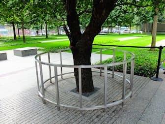 Het 9/11 Memorial-Monument in New York - Survivor Tree