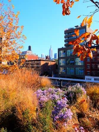 High Line Park in New York - Uitzicht