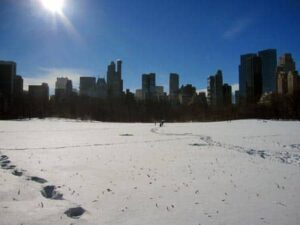 winter in central park new york