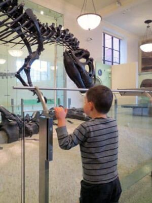 met de kids naar de american museum of natural history new york