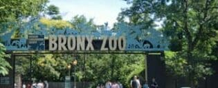 Bronx Zoo in New York