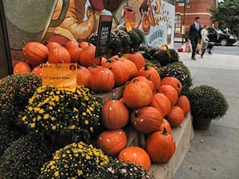 Halloweenpompoenen in New York