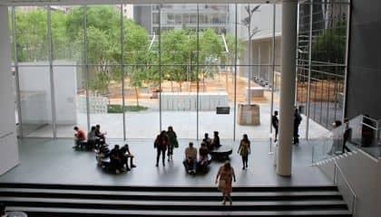 Museum of Modern Art in New York - Tuin