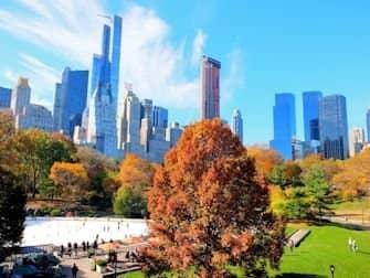 schaatsen-in-new-york-central-park