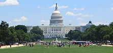 Dagtocht naar Washington D.C.