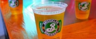 Brooklyn Brewery en Bier Tour