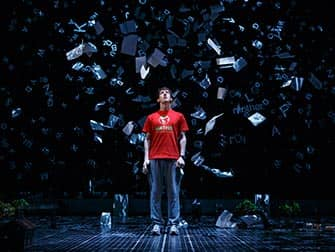 The Curious Incident of the Dog in the Night-Time op Broadway - Show in New York