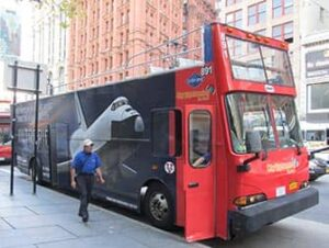 Enjoy 2 days on this hop-on hop-off double-decker tour with over 30 stops and 3 loops, Uptown, Downtown, and Brooklyn, plus a night tour of NYC.