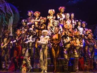 Cats op Broadway Tickets - Samenspel