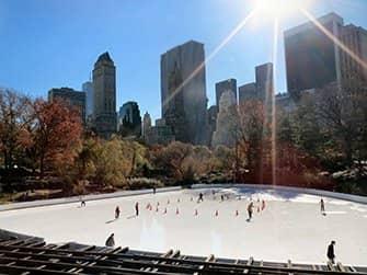 Nederlandse Fietstour met Kerst in New York - Central Park