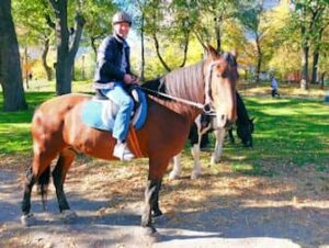 Paardrijden in Central Park