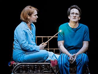 Harry Potter op Broadway Tickets - Harry en Ginny