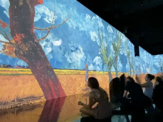Van Gogh: The Immersive Experience in New York Tickets - Kunst