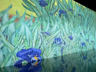Van Gogh: The Immersive Experience in New York Tickets - Vincent van Gogh